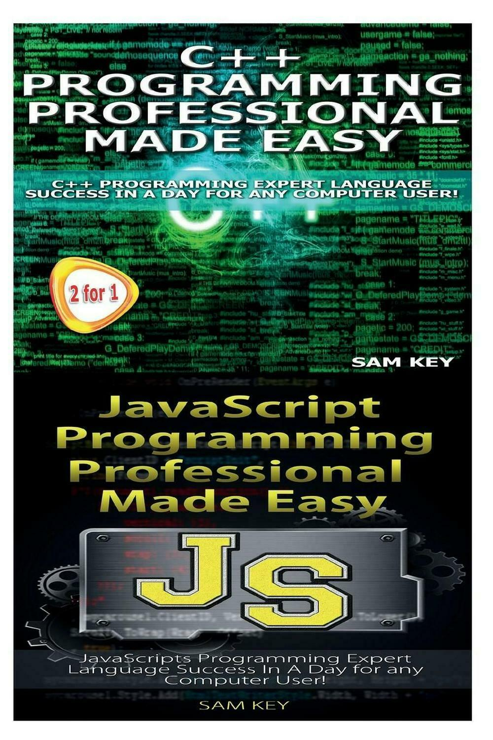 C++ Programming Professional Made Easy & JavaScript Professional Programming Mad |