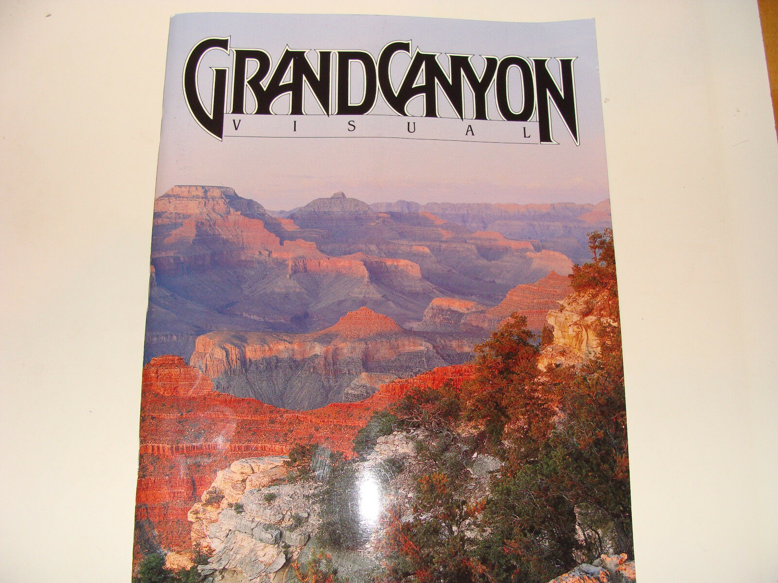 Grand Canyon Visual by Hoffman and John Floyd Hoffman (1987, Paperback) |