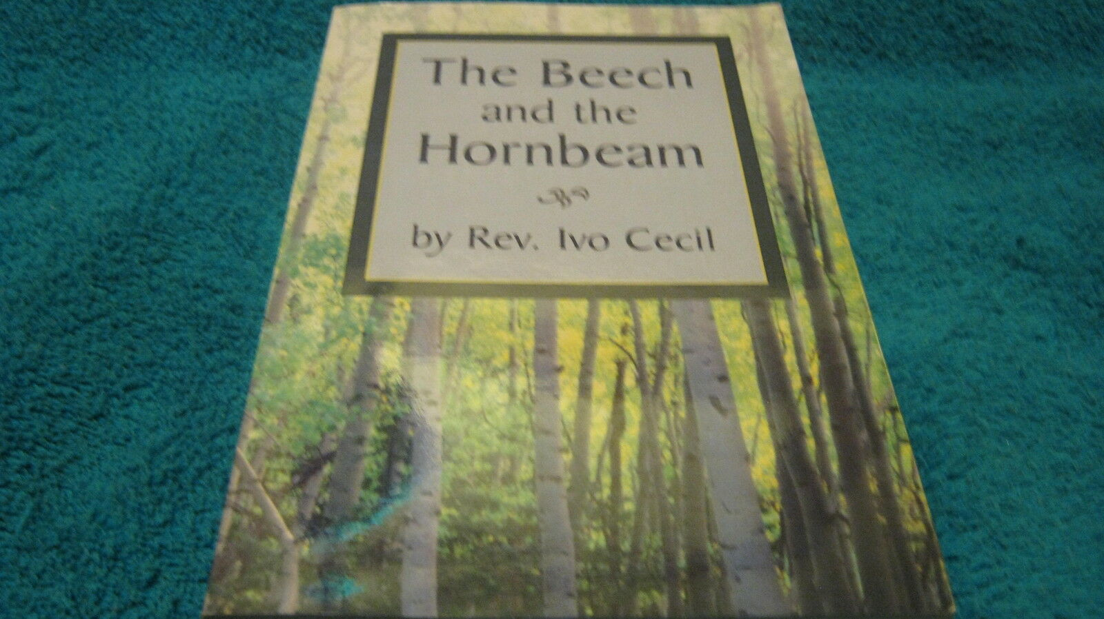 The Beech and the Hornbeam by Rev. Ivo Cecil Free Shipping |